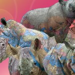 World Rhino Day 2012