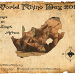 World Rhino Day Events in South Africa