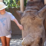 Rhino Internet sponsored a fundraiser at the Phoenix Zoo in honor of World Rhino Day, and sold custom designed t-shirts — with all proceeds going to the rhinos. Photo courtesy of Rhino Internet.