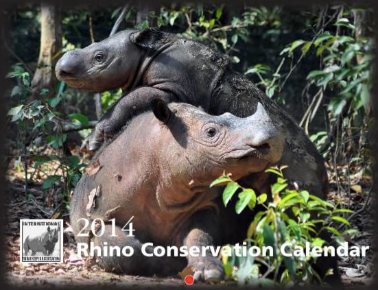 The 2014 Rhino Conservation Calendars are NOW on sale for $22 USD until September 22nd!