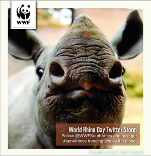 Join the WWF Twitter storm! #iam4rhinos