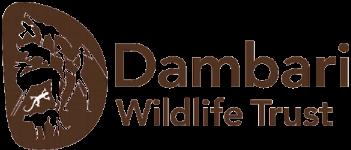 D-Logo-150-H1