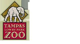 tampas-lowry-park-zoo